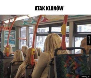 W autobusie