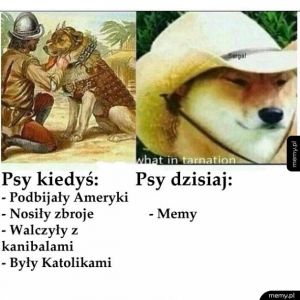 Psy - kiedyś i dziś