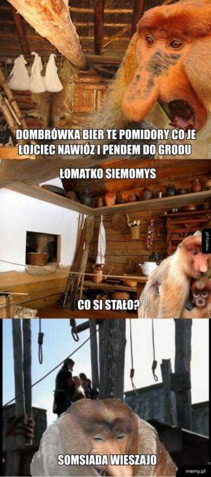 Janusze średniowiecza