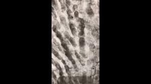 Wyniki wyszukiwania Obrazy dla stworzony z odcisków palców