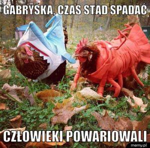 Gabryśka, czas stąd spadać