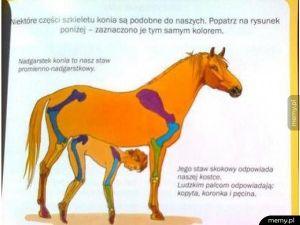 Nauka biologi...