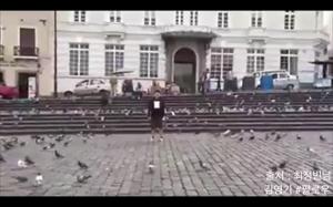 Władca gołębi