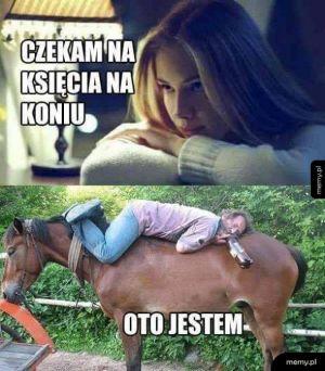 Księciuniu na koniu