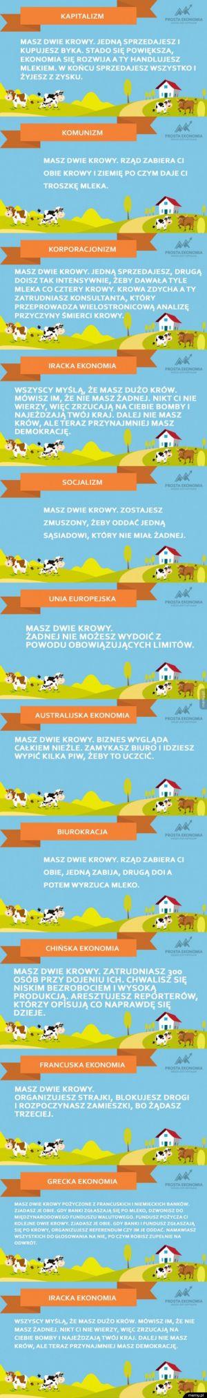 Krowy uczą ekonomii
