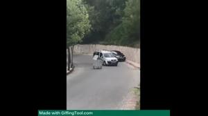 Agresja na drodze
