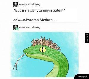 Odwrotna Meduza