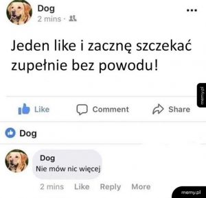 Co ten pieseł