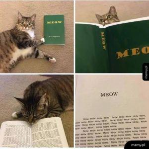Książka dla kota