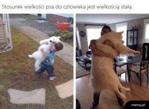Wykład z psiej nauki