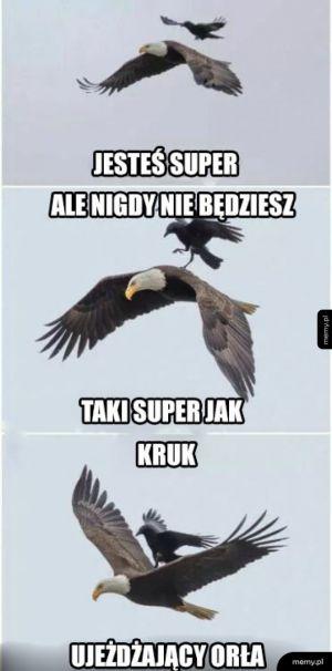 Super ptak