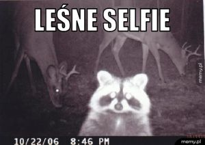 Leśne selfie