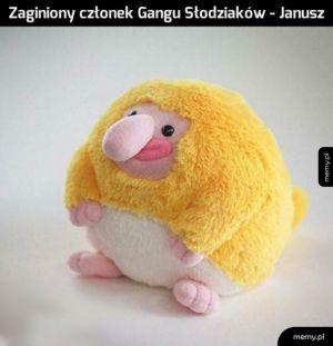 Uroczy Janusz