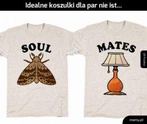 Chcę te koszulki