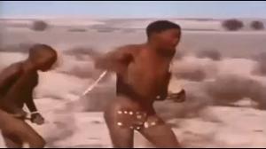 Ludzie kradną zdobycz gepardom