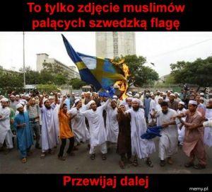 Muslimy