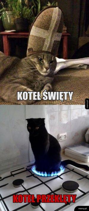 Upadłe koteły