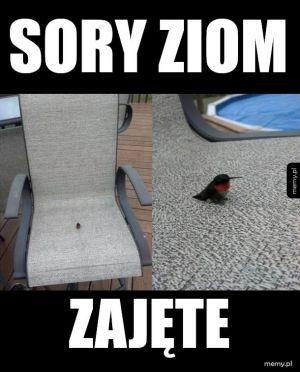 `Koliber