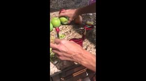 Obieraczka do jabłek