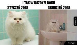 Nowy rok nowa ja