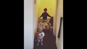 Pies nie wierzy w czary