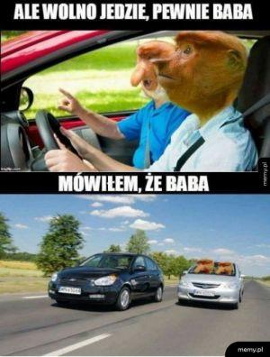 Janusz za kierownicą