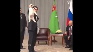 Puten pokazuje jk poprawnie trzymać szczeniaka