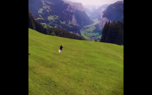 Wieś w  Szwajcarii