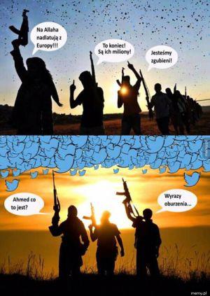 Tymczasem w ISIS