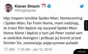 Spider-Man Sam w Domu
