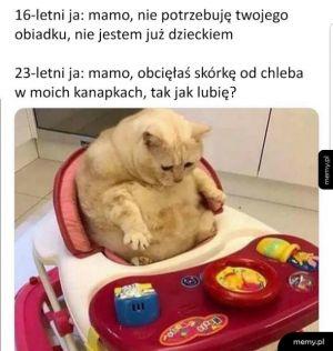 Mamo, gotuj mi!