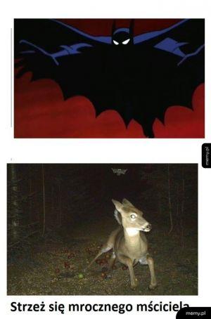 Co się dzieję nocą