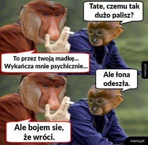 Zestresowany Janusz