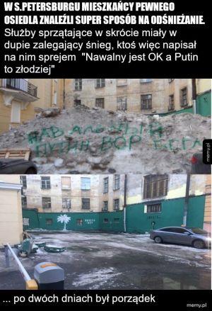 Nawalny to opozycja