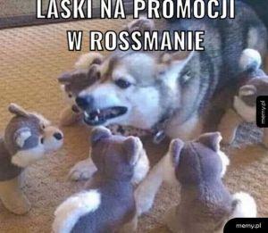 Promocja w Rossmanie