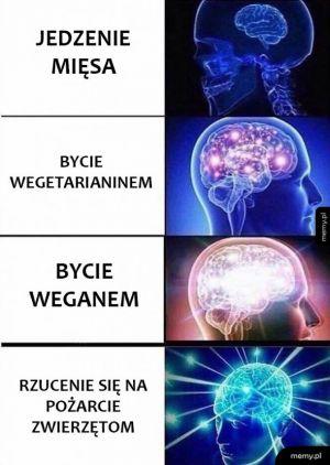 Mózg roz*any