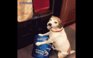 To moje piwko!!!