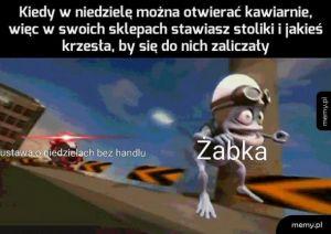 Nigdy nie dorwą Żabek