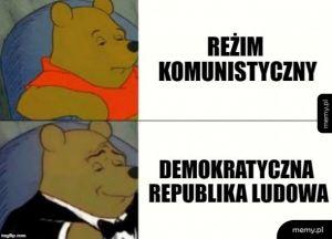 Polityczny Puchatek