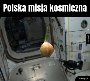 Cebula w kosmosie