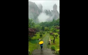 Wiosna w  Zhangjiajie