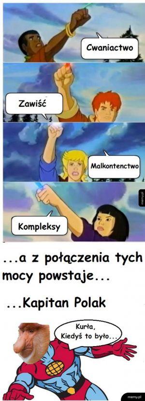 Szkalowanie Polaków