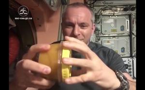 Miód w kosmosie