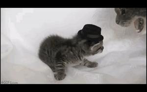 Zdejmij ten okropny kapelusz!
