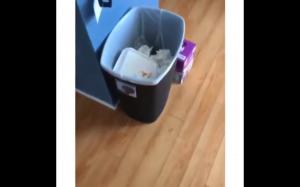 Kto grzebał w śmieciach?