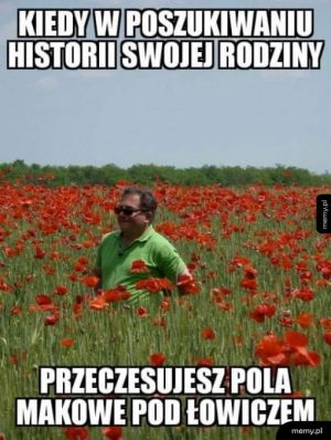 Co ten Makłowicz
