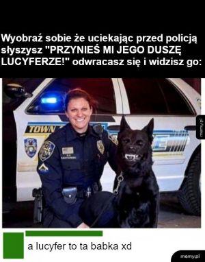 Lucek
