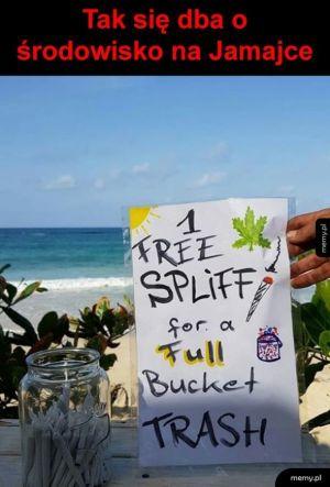 Jamajska ekologia
