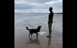 Rzucaj człowiek