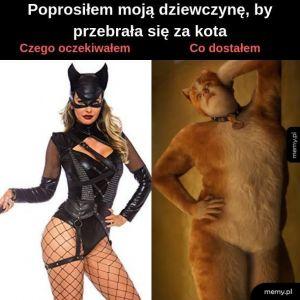 Kobieta-kot